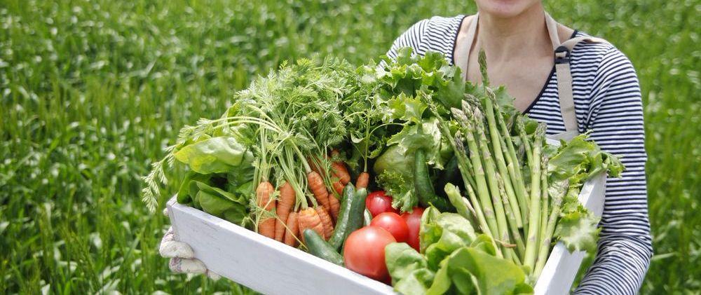 抵禦空污 吃這些食物可以保肺!