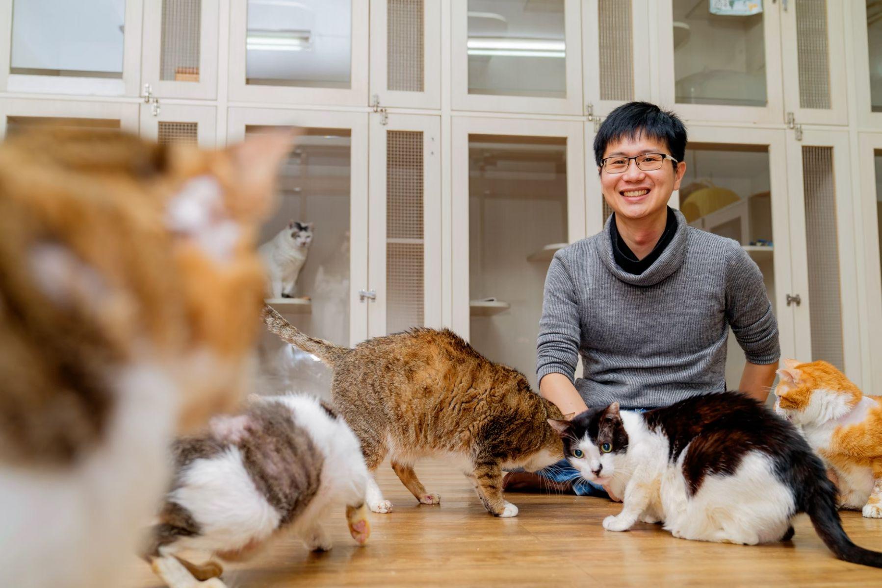 不當百萬年薪科技男!從研發到生產都是MIT 他要靠「環保貓砂」拯救流浪貓