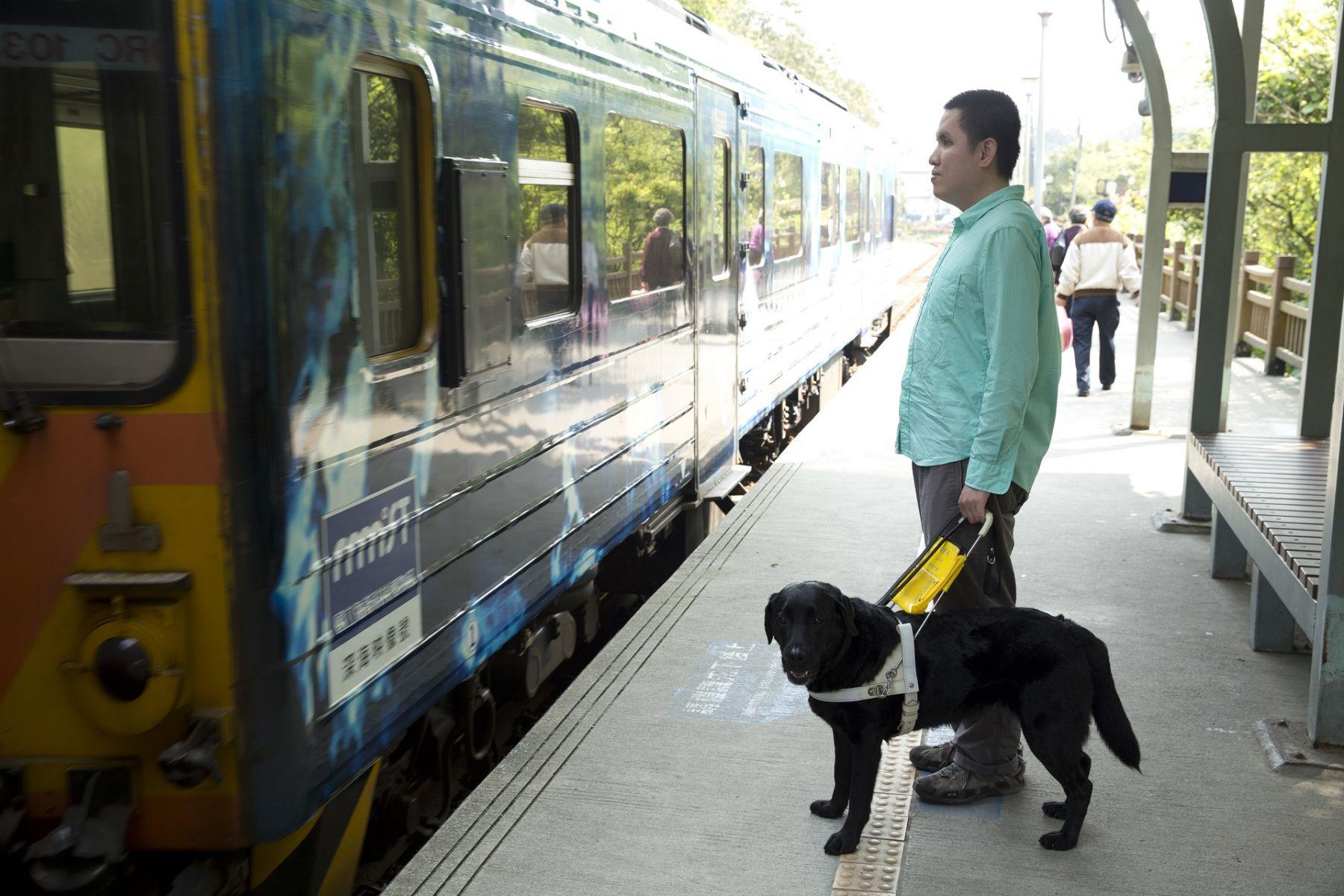「原來走路可以不跌倒」 這隻導盲犬竟成了他的人生浮木