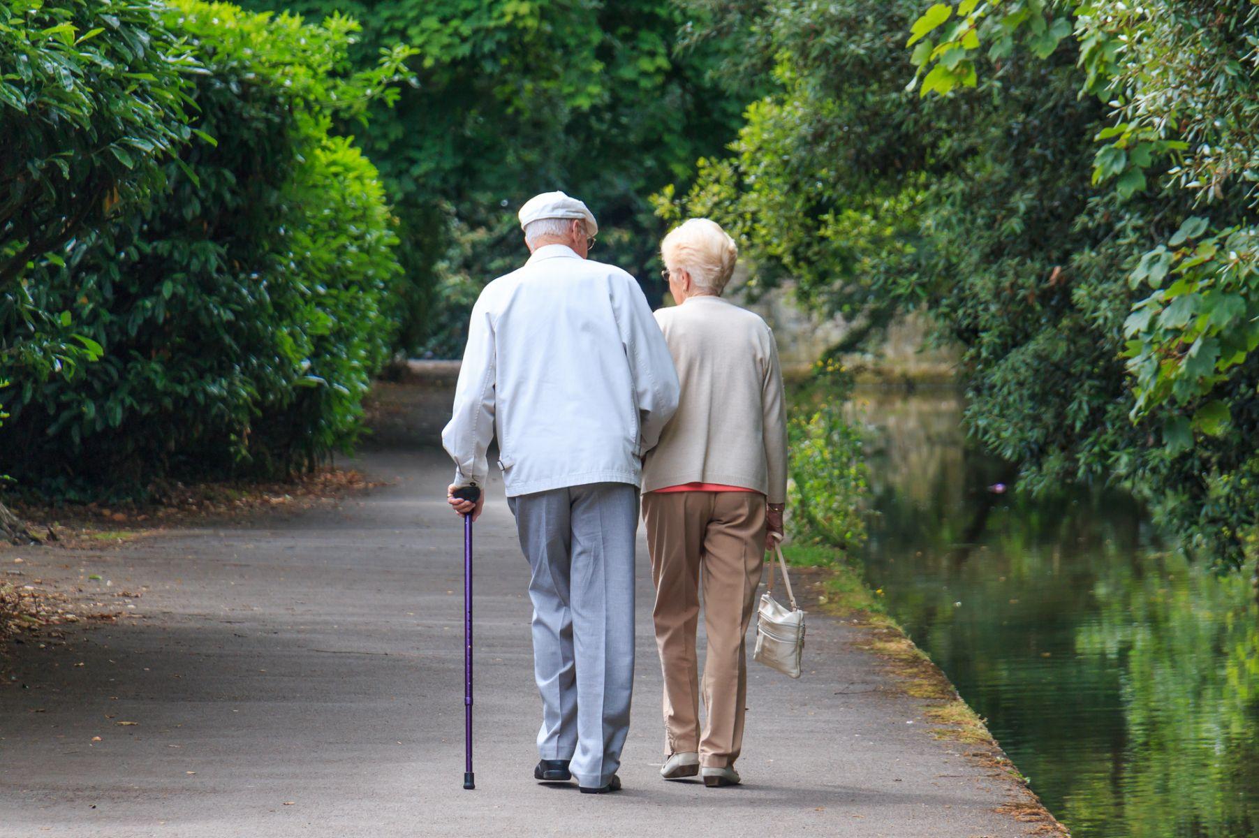 老人多散步有益健康 研究:可延長壽命