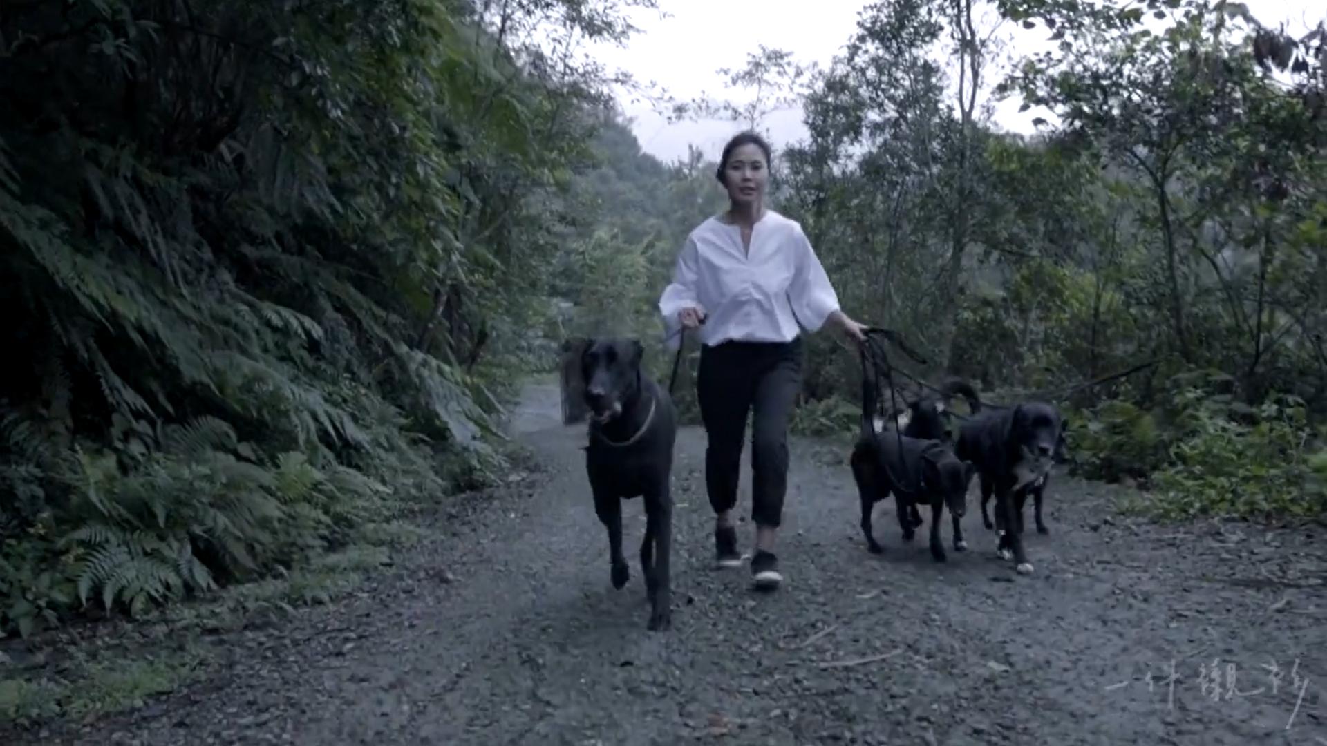 Mary與她撿的流浪狗