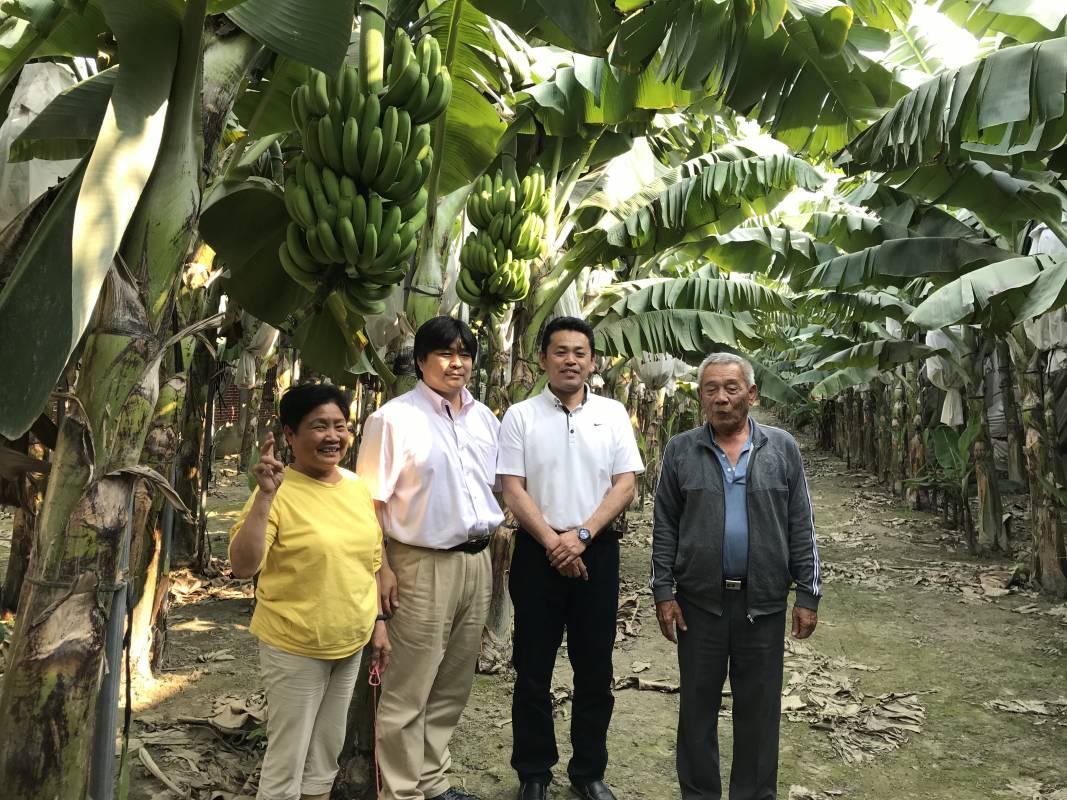 日本放送協會NHK的日本人與蘇明利夫婦於莿桐香蕉園合影