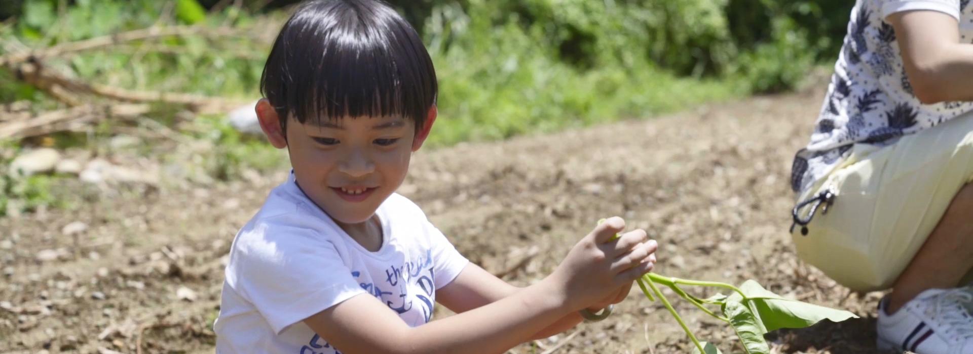 百萬蔬菜免費送 這家人超有愛