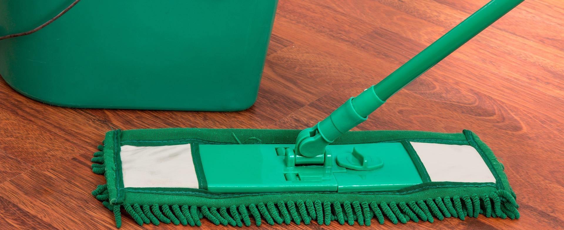 年終大掃除灰塵滿天飛⋯小心把「塵蟎」吃下肚,增加腸漏風險!