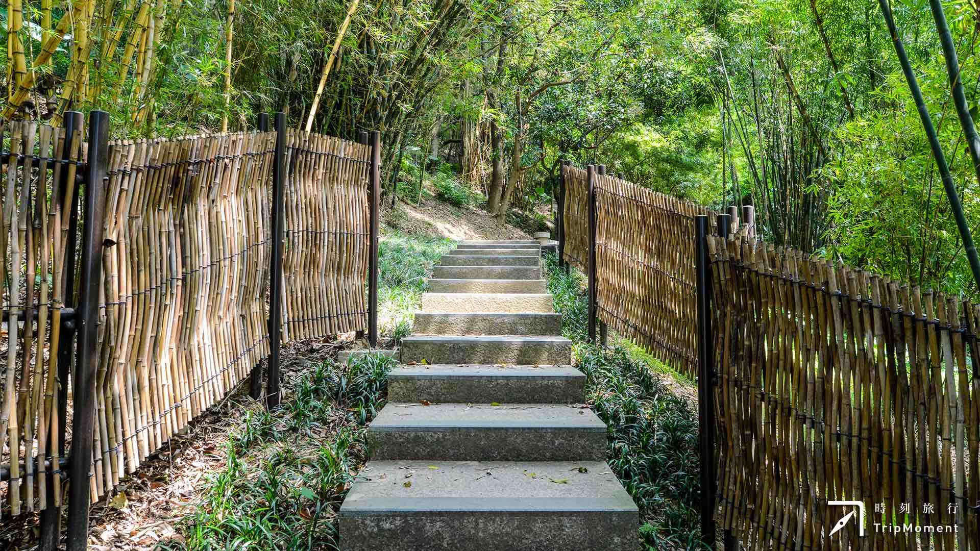 桃園虎頭山公園》探索樹屋和空中步道,還有森林野餐小確幸