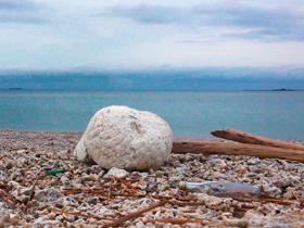 廢棄保麗龍也能變3C產品!?光寶科技用這招消滅「海洋垃圾」!